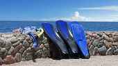 foto of fin  - snorkel and fins from summer in hurghada in egypt - JPG