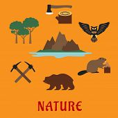 Постер, плакат: Canadian nature symbols flat icons