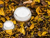 image of cosmetic products  - Organic skin care products - JPG