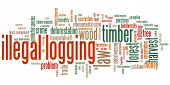 stock photo of illegal  - Illegal logging environmental issues and concepts word cloud illustration - JPG