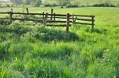 stock photo of greenery  - wooden fence in a meadow greenery grass - JPG