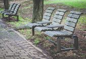 stock photo of pubic  - Wooden bench at pubic park in summer - JPG