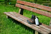 pic of canteen  - Hiking boots and a canteen on a seat bench in the nature - JPG