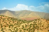 pic of atlas  - morocco outdoor general view and atlas mountains landscape - JPG