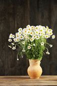 image of pitcher  - Beautiful bouquet of daisies in pitcher on wooden background - JPG