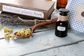 picture of roughage  - Medicinal plants book with dried herbs on table close up - JPG