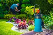 foto of pest control  - Garden Pest Control Spray and Male Gardener in the Background - JPG