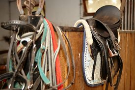 stock photo of stall  - Photo of saddle in stall - JPG