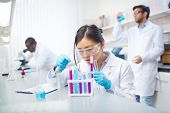 Concentrated female Asian scientist in lab coat and safety goggles working with colored test tubes i poster