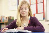 picture of ten years old  - Schoolgirl Studying In Classroom - JPG