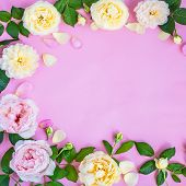 Pink And White Peonies On A Pink Background. Pink Peonies. Vintage Background With Flowers And Place poster