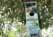 Birds On Branch Of Tree And Birdhouse.colourful Bird Houses In The Park Hanging On A Tree, The Bird  poster