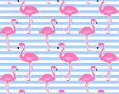 Vector Pink Flamingo Seamless Pattern. Summer Tropical Background. Cute Flamingos Isolated On White. poster