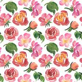 Seamless Pattern Of Watercolor Rose Flowers, Blossoms And Green Leaves On White Background. Watercol poster