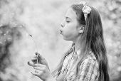 Beliefs About Dandelion. Girl Making Wish And Blowing Dandelion Nature Background. Why People Wish O poster