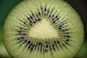Macro Shot Of A Kiwi Slice Sliced Kiwi Macro. poster