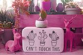 Magenta Pink Colored Indoor Gardening Space With Notice Board poster