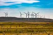 A Wide Angle Shot Of Rolling Hills With A Wind Farm In Rural Saskatchewan, Canada. Natural Renewable poster