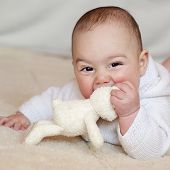 pic of teething baby  - Portrait of a cute baby boy or girl lying on her back looking up playing with a soft toy rabbit - JPG