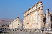 pic of cardo  - Pompey made Apamea  - JPG