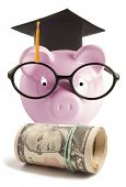 stock photo of graduation hat  - Piggy bank with graduation hat - JPG