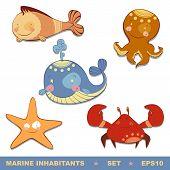 picture of sucker-fish  - set of marine inhabitants - JPG