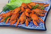foto of boil  - Boiled crayfish in the bowl with dill - JPG