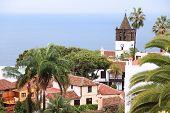 foto of canary  - Tenerife Canary Islands Spain  - JPG