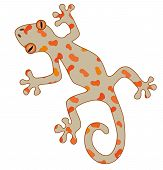 pic of orange frog  - An illustration of a brown gecko with orange spots - JPG