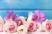 picture of blue rose  - Pastel pink roses clematis flowers on white wooden background against blue wall - JPG