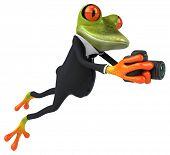 pic of megapixel  - Fun frog - JPG