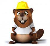 pic of beaver  - Beaver with a white tshirt - JPG