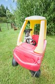 image of buggy  - cute little jack russell driving a plastic toy buggy - JPG