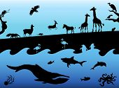 stock photo of blue animal  - Concept background with animal silhouettes - JPG