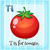 stock photo of letter t  - Flashcard letter T is for tomato - JPG