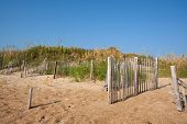 stock photo of sea oats  - Fences for erosion control on a sand dune at a beach near Nags Head on the Outer Banks of North Carolina with sea oats  - JPG
