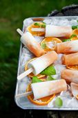 image of cantaloupe  - Homemade frozen yogurt cantaloupe popsicles - JPG