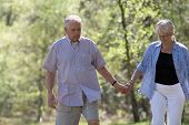 stock photo of elderly couple  - Elderly couple walking hand in hand on a stroll through the parc - JPG