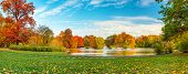 Beautiful fall landscape and cloudy sky. Autumn panorama - yellowed trees in city park in cloudy wea poster