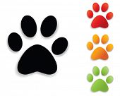 foto of paws  -  paw print collection - JPG