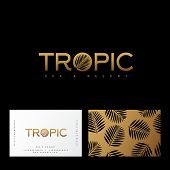 Tropic Gold Logo. Resort And Spa Emblem. O Letter With Palm Leaf.  Identity, Business Card. Pattern  poster