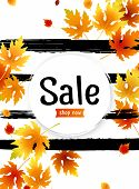 Autumn Sale Background Layout With Leaves For Shopping Sale, Promo Poster And Frame Leaflet, Web Ban poster
