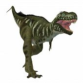 Bistahieversor Dinosaur On White 3d Illustration - Bistahieversor Was A Carnivorous Theropod Dinosau poster