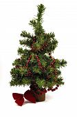pic of gilf  - One green chrismas tree and red garland - JPG