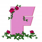 image of climbing roses  - The letter F in the alphabet set Blushing Roses is soft pink - JPG