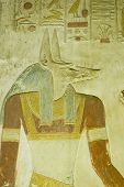 picture of jackal  - Ancient Egyptian bas relief carving of the jackal headed god Anubis.  The deity of death and mummification.  
