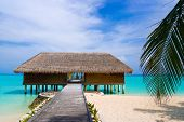 picture of kuramathi  - Spa salon on beach of tropical island healthcare background - JPG