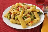 Chicken On Rigatoni