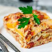 foto of lasagna  - A Piece of Chicken and Pumpkin Lasagna close up square - JPG