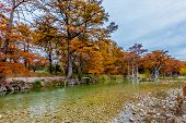 picture of opulence  - Beautiful Fall Foliage Surrounding the Clear Frio River Texas - JPG